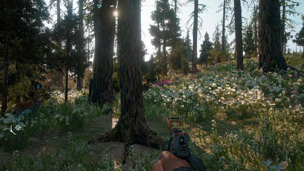 Far Cry New Dawn Screenshot 2019.02.18 - 23.43.51.91.png